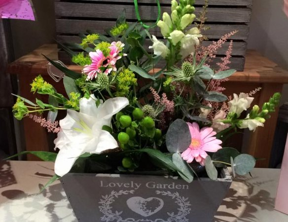 Flowers for occassions