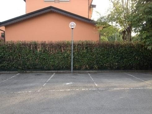 siepe parcheggio