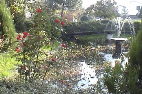 Il cascinale dispone di un grande parco con fiori, piante e laghetto.