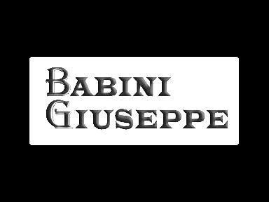 Babini Giuseppe funerali servizio 24 ore
