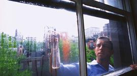 Pulizia vetri finestra