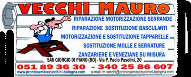 Vecchi Mauro Pronto Service Zucchini