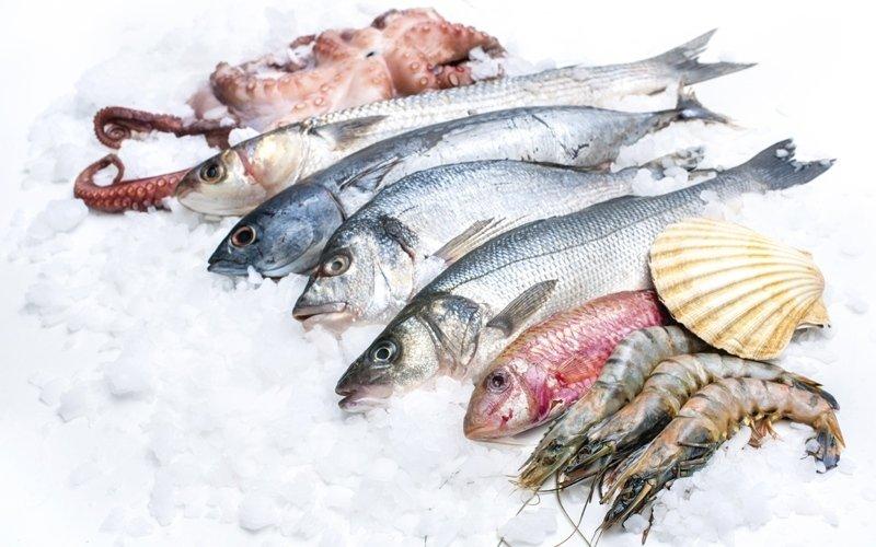 crudità di pesce