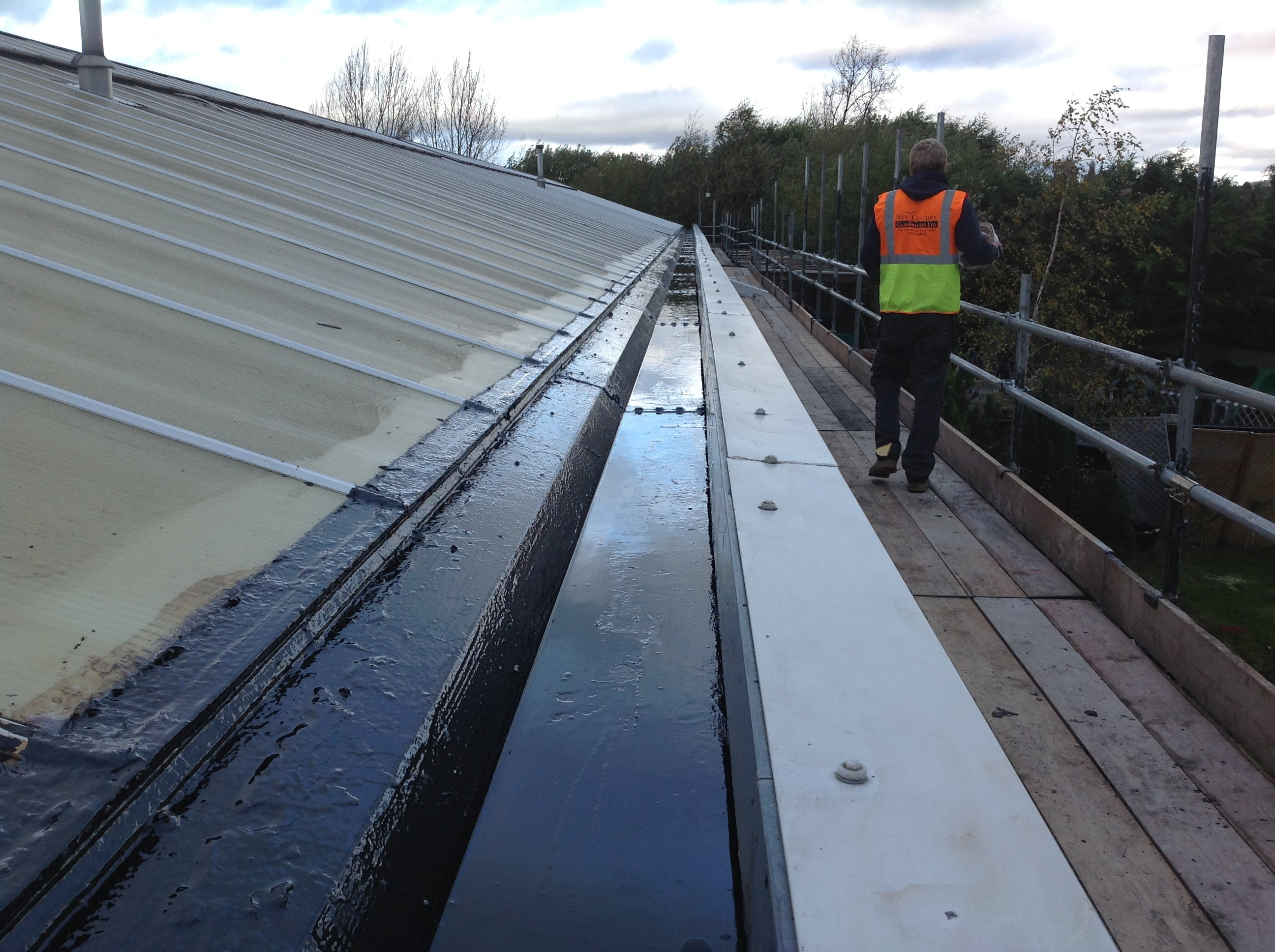 new glasshouse roof