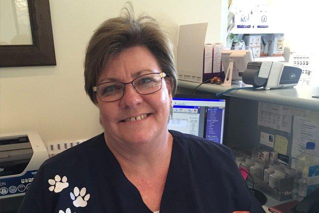 wentworth falls animal hospital carolyn pitt