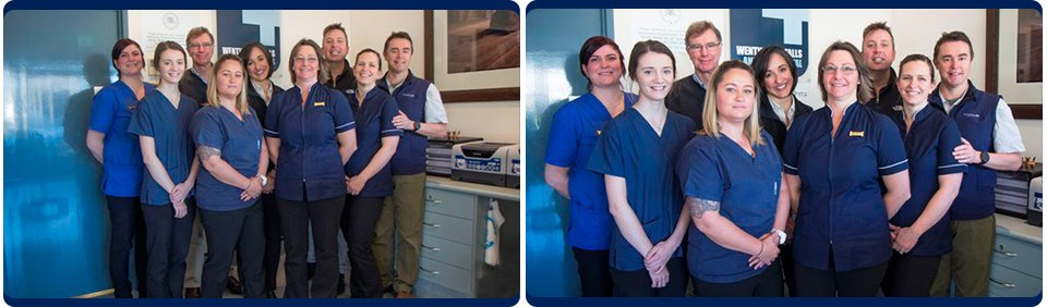 wentworth falls animal hospital group of hospital staffs