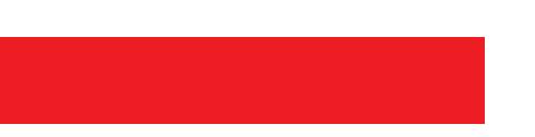 teaze n tanglez logo