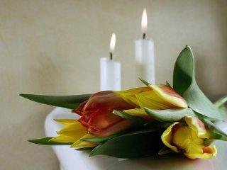 servizi floreali Alghero