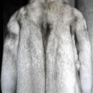 pelliccia volpe bianca