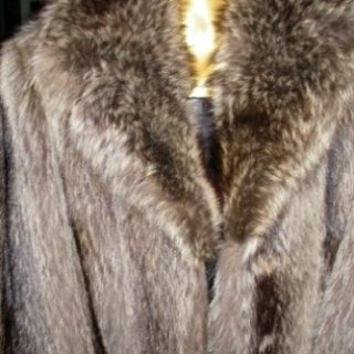pellicce marmotta