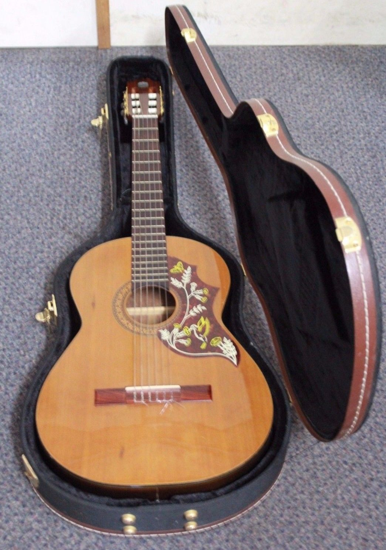 musical instruments maitland