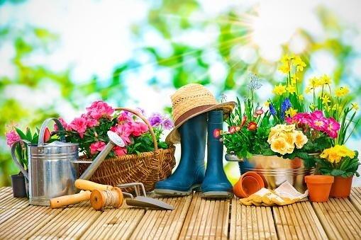 realizzazione giardini