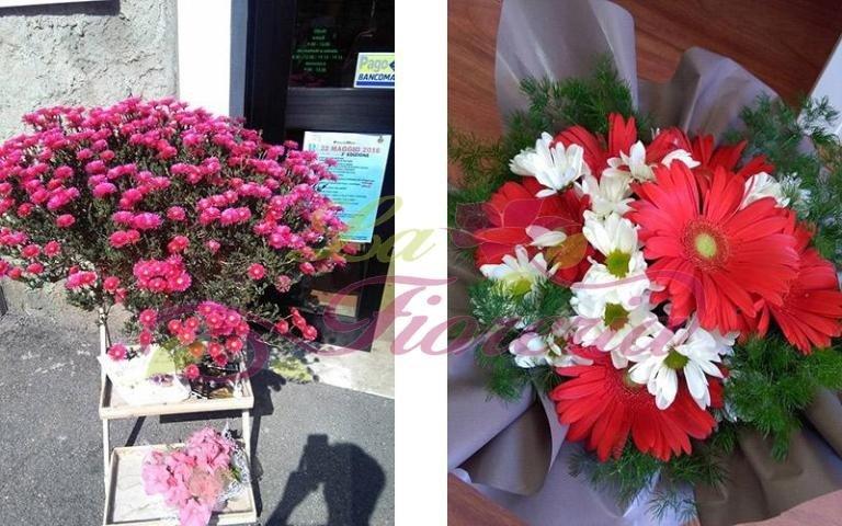 Centrotavola con fiori colorati