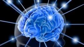 • malattia di Parkinson • Malattia di  placca neuromuscolare • Polineuropatia acuta e croniche,malattie dei nervi cranici ,