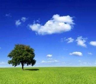 bonifiche ambientali, controllo dell'inquinamento, depurazione delle acque