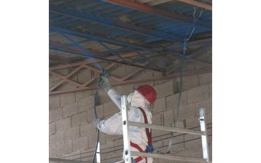 asbestos encapsulation services