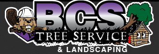 BCS Tree Service
