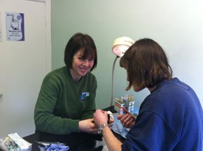 Veterinary practices - Comber, Newtownards - Balloo Vets - Veterinary practices