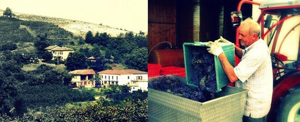 Azienda vinicola Novara