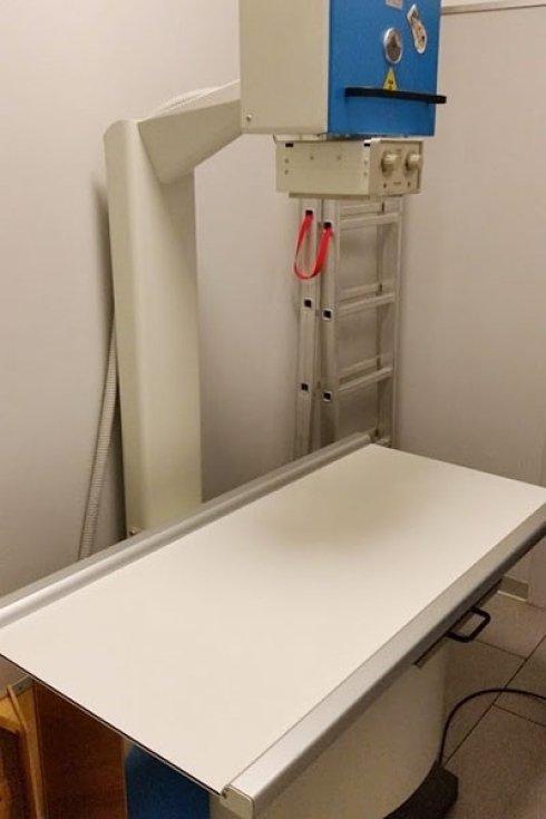 radiografie animali