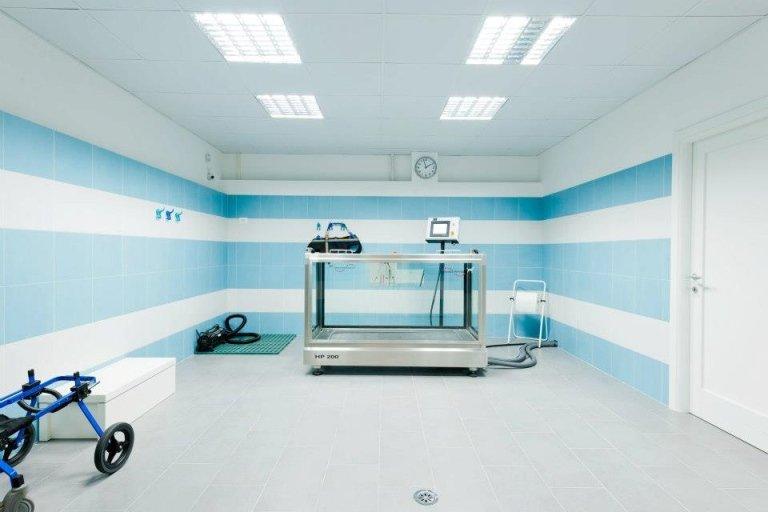 inquadratura frontale di macchinario per la fisioterapia veterinaria