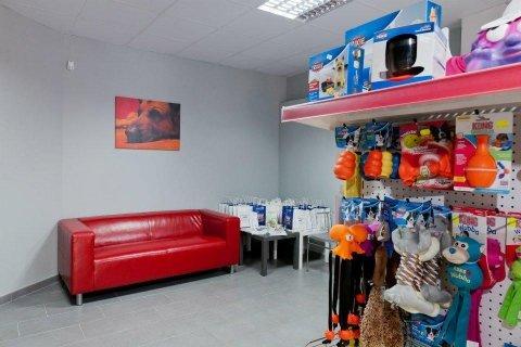 interno centro fisioterapia veterinaria
