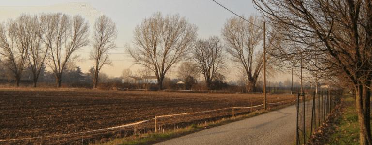 Azienda agricola Verde Più contesto