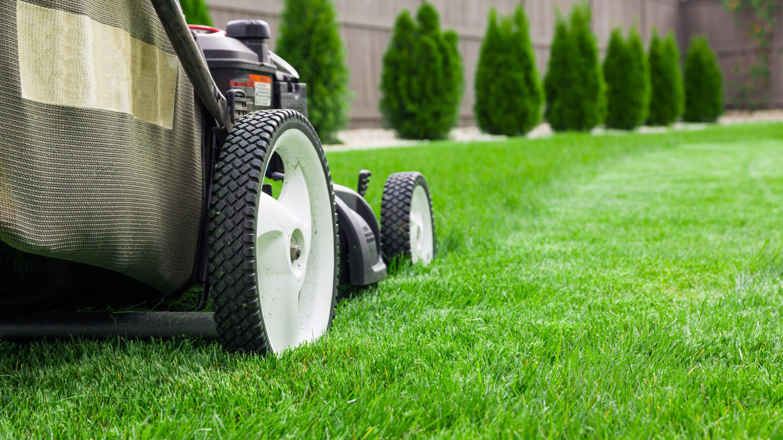 JH Lawn Care Services