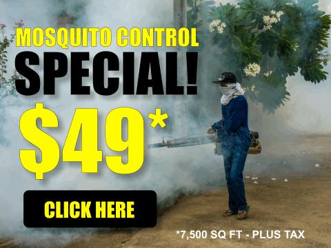 Mosquito Control Special