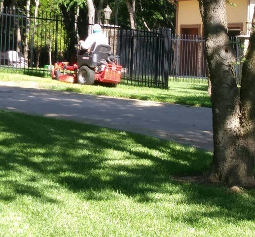 Lawn Services in Arlington Texas
