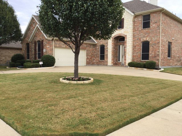 Landscaping Services in Mansfield Tx