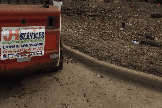 Tree Services in Mansfield Texas