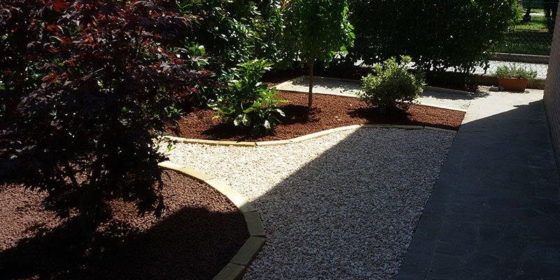 delle aiuole con delle piante n un terreno con dei sassolini
