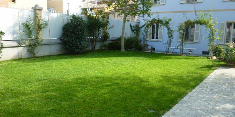 un prato verde, degli alberi e due archi di piante rampicanti