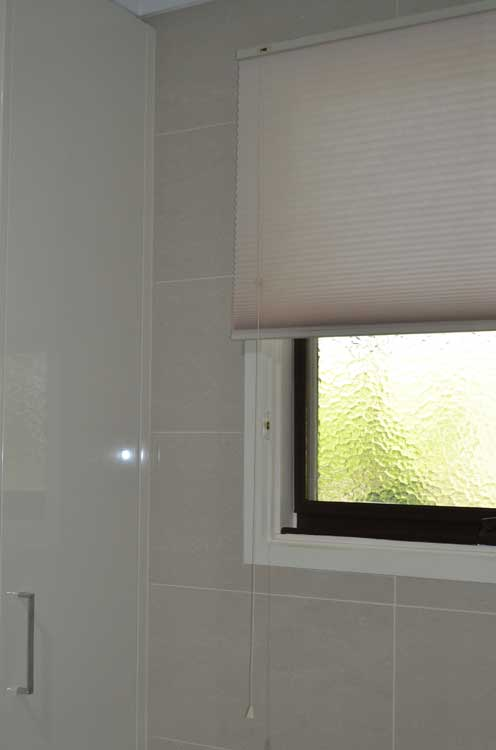 shower window with blinds