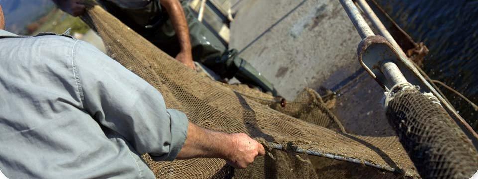 due pescatori tirano una rete da un rullo di una barca
