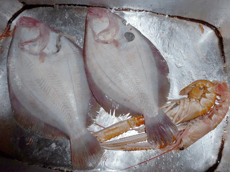 pesce veneziana