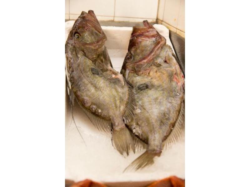 primi pesce