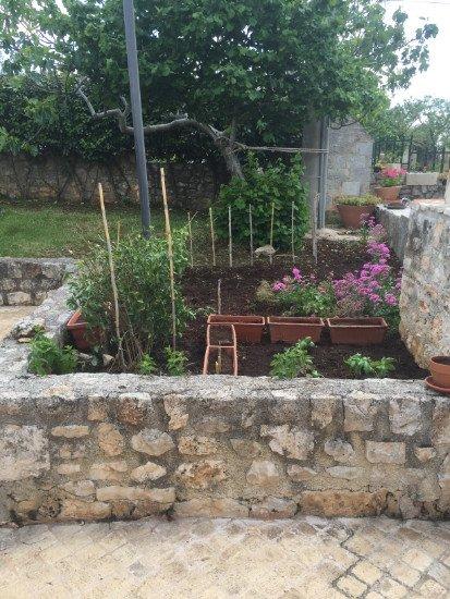un muretto e dietro delle piante