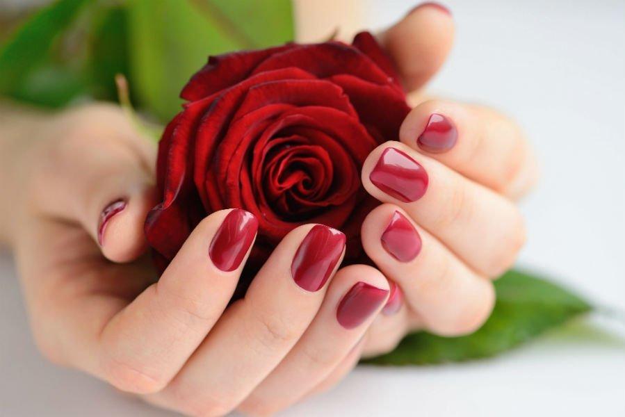 due mani con unghie con smalto rosso che tengono una rosa rossa
