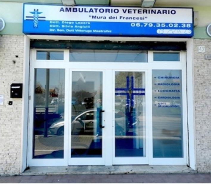 entrata ambulatorio veterinario