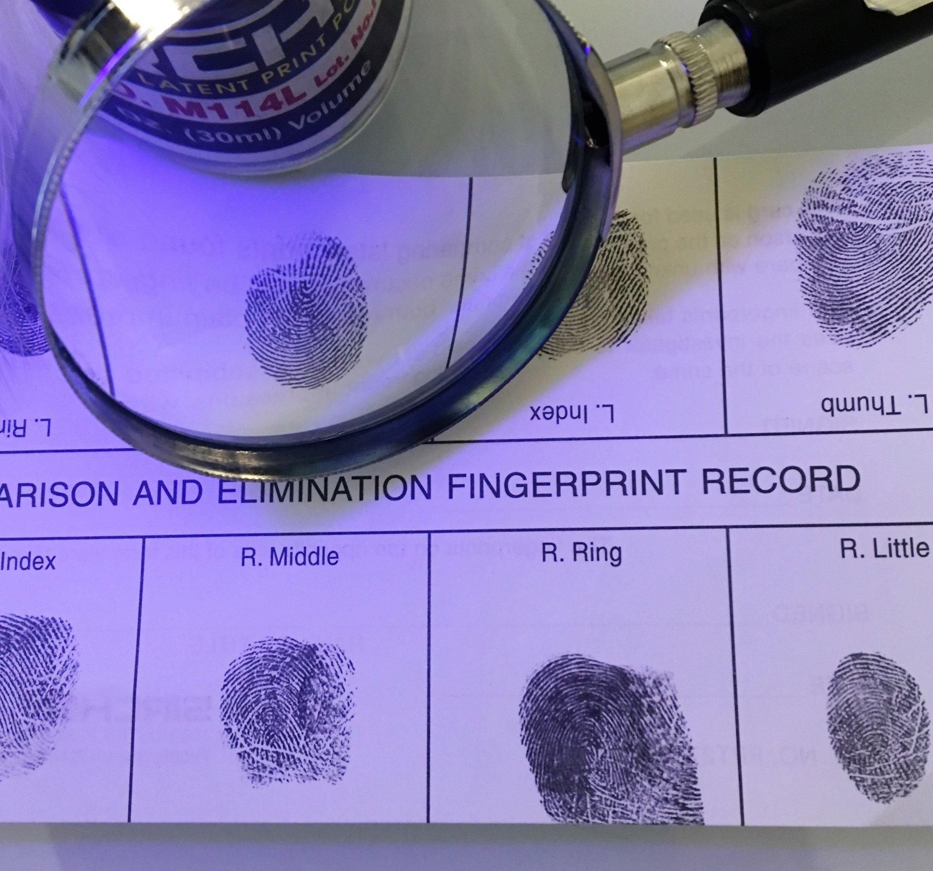 impronte digitali schedate