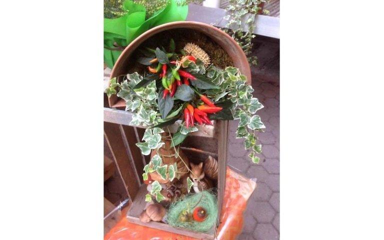 Allestimenti con fiori e piante