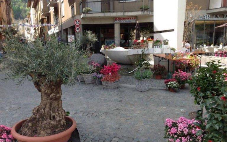 Allestimenti floreali per aree pubbliche
