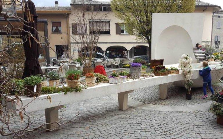 Allestimenti floreali per giardini pubblici