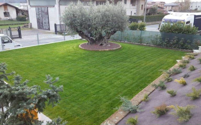 Progettazione giardini sondrio azienda agricola vivai for Realizzazione giardini privati
