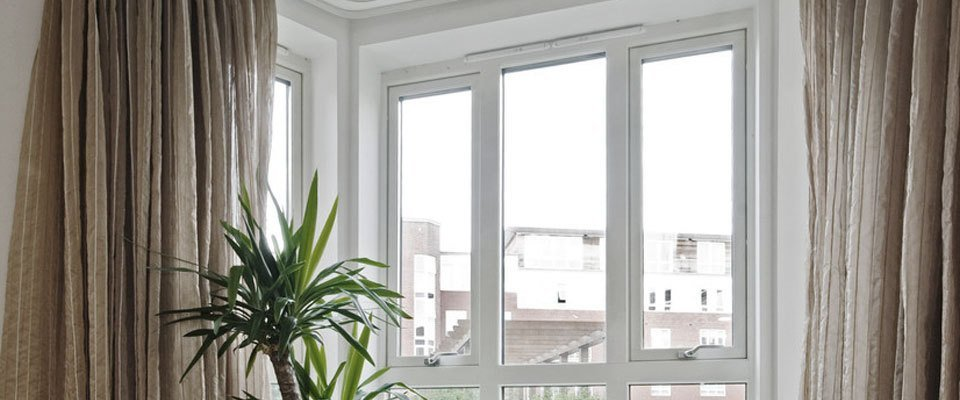 Double glazed room interior with pot palm plant