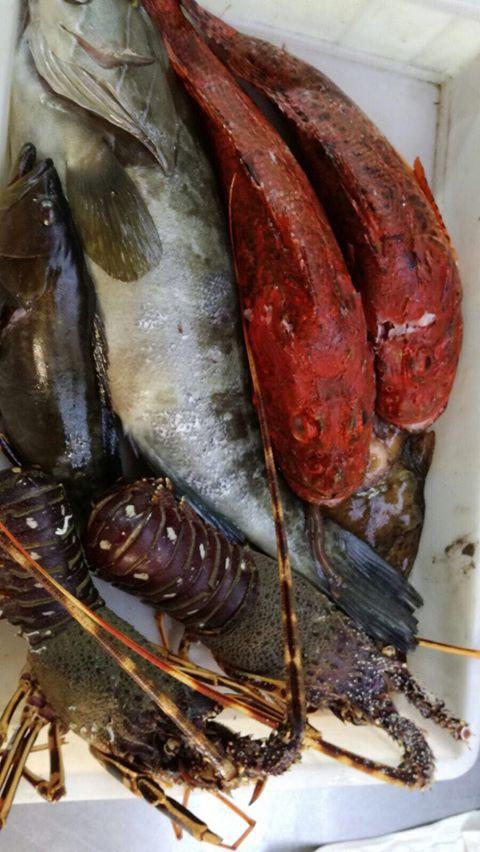 Aragoste e pesce fresco