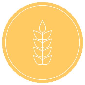 icona dei cereali