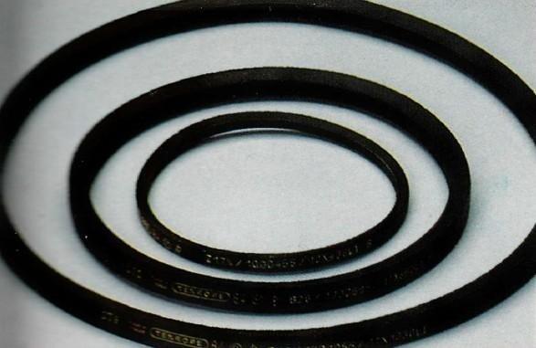 Cinghie trapezoidali per trasmissione A&B Cuscinetti La Spezia